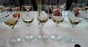 Lorenzo Colombo Blog Io e il vino